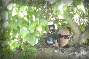 Photographer hiding in a tree